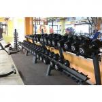 Гантельный ряд Profi FIT PROFESSIONAL 2,5 кг - 25 кг
