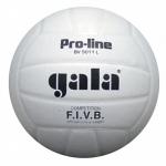 Мяч волейб. матчевый GALA Pro-Line Competition р.5