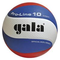 Мяч волейбольный матчевый GALA Pro-Line 10 р.5