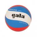 Мяч волейбольный проф. GALA Pro-Line 10 FIVB р.5