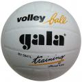 Мяч волейбольный трен. GALA Training р.5